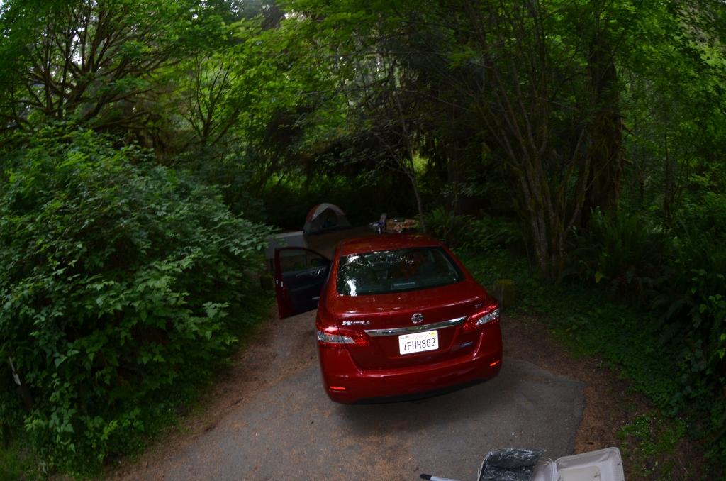 Car Campsite